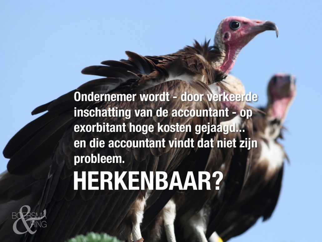 Boersma & Ring over starre accountants