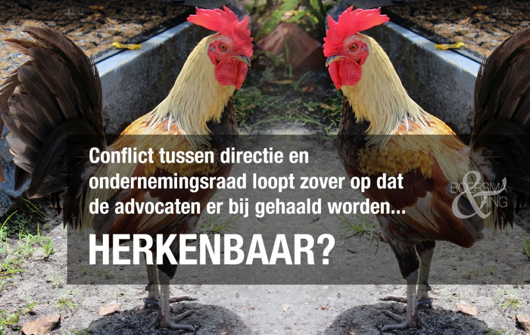 Directeur en voorzitter OR als kemphanen tegenover elkaar - Boersma & Ring